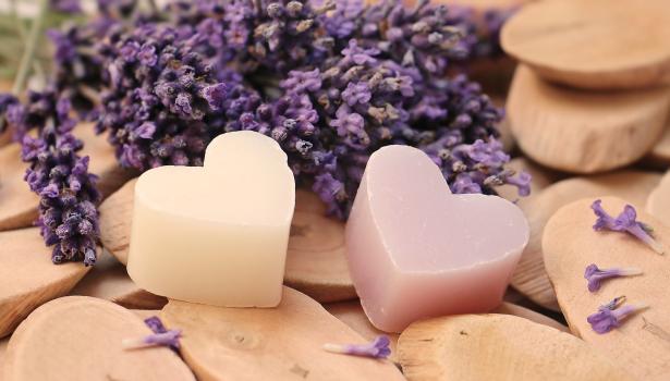 lavender-2443210_1920.png